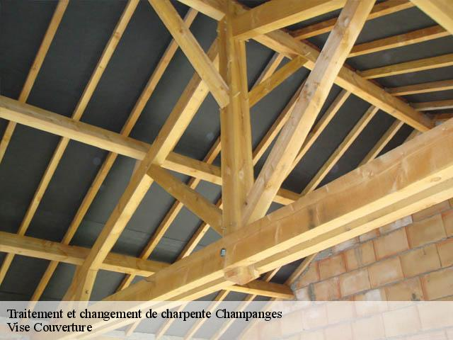Traitement de charpente  champanges-74500