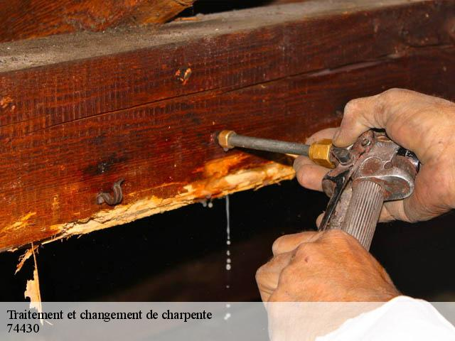 Traitement de charpente  74430