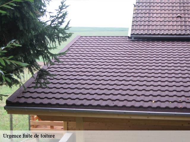 Réparation fuite de toiture à Perrignier 74550